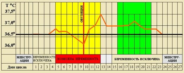 Базальная температура перед месячными
