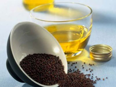 Горчичное масло полезные свойства и противопоказания
