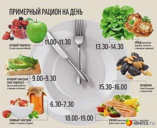 Какие продукты богаты белком