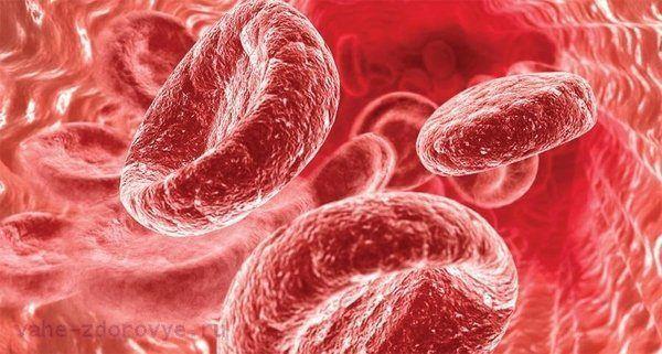Какие продукты поднимают гемоглобин в крови