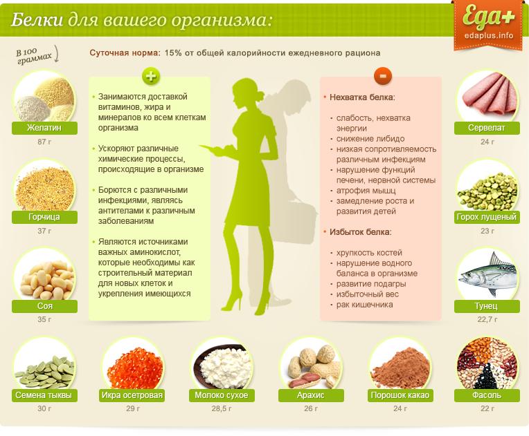 Какие продукты содержат белок