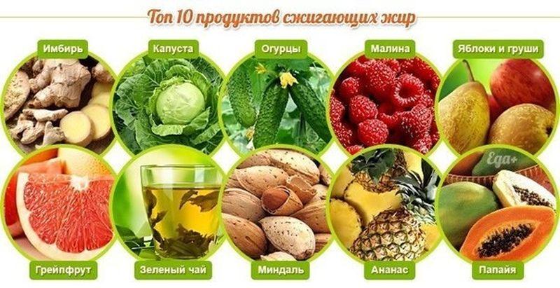 Какие продукты ускоряют обмен веществ