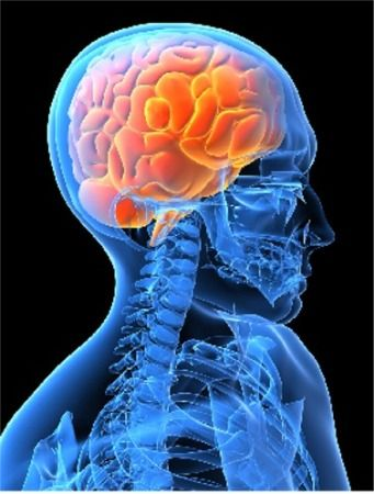Нарушение мозгового кровообращения