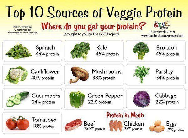 Растительный белок в каких продуктах