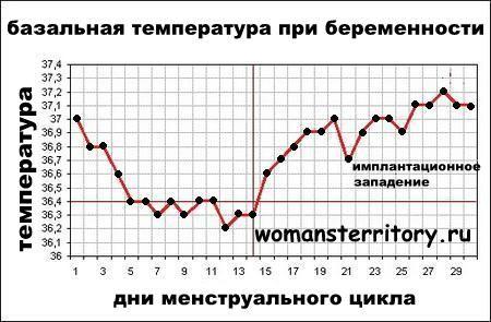 Ректальная температура у беременных в 1 триместре 15