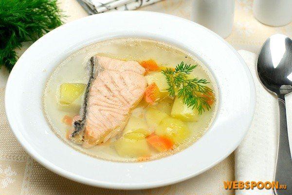 Уха из лосося рецепт