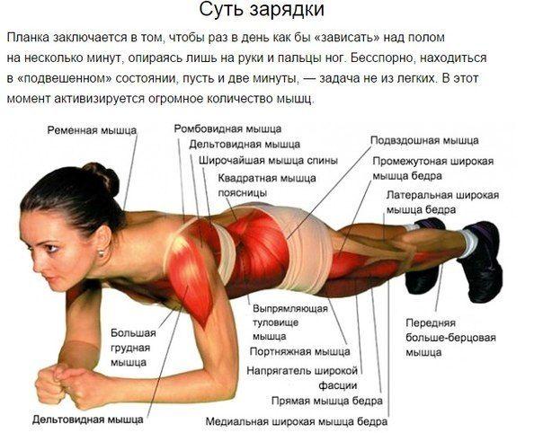 Упражнения для увеличения бюста в домашних условиях