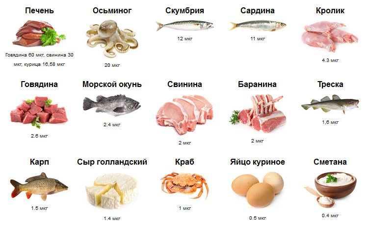 В каких продуктах содержится в12