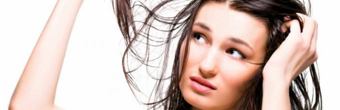 Жирные волосы что делать в домашних условиях