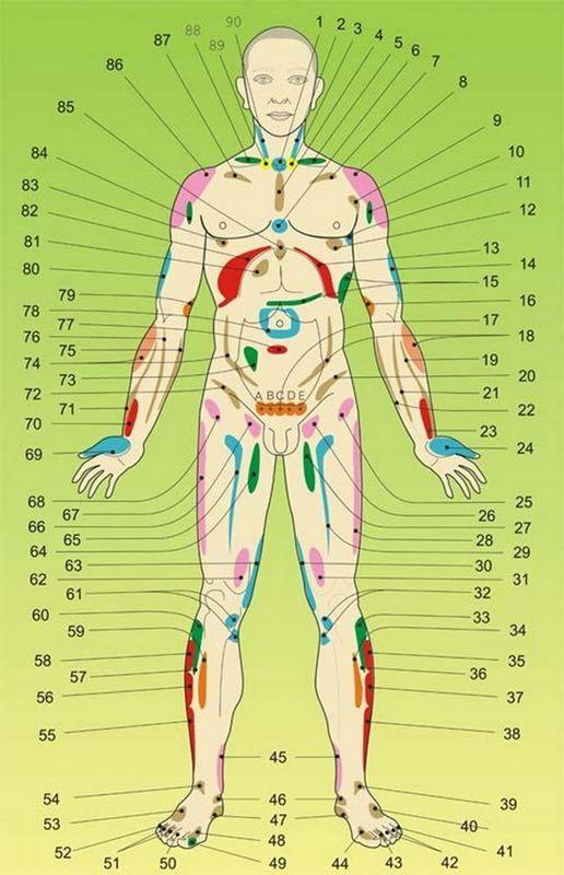 Акупунктурные точки на теле человека