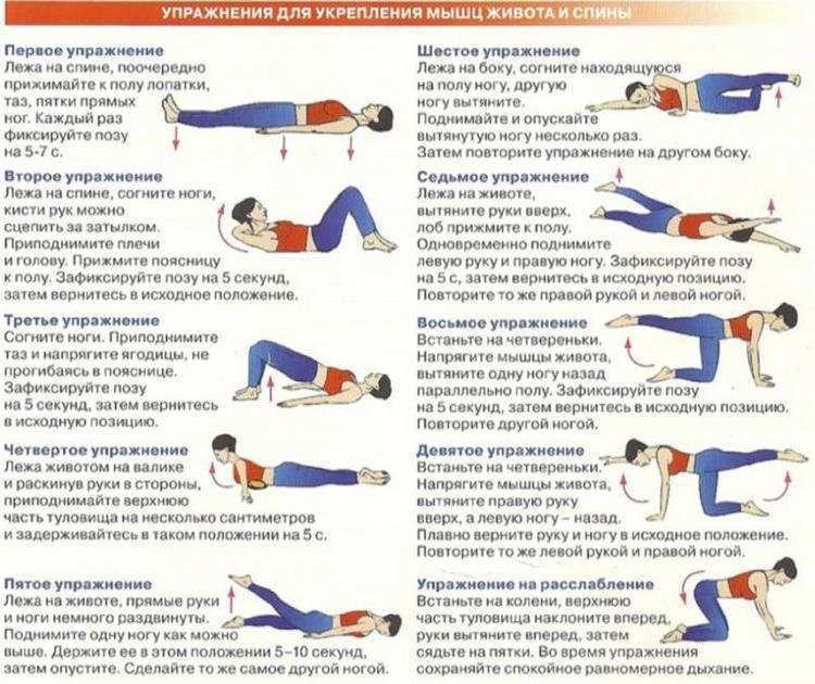 Упражнения в картинках для укрепления спины