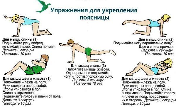 Гимнастика для укрепления мышц спины