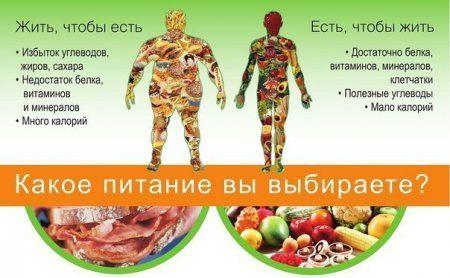 Как лучше похудеть