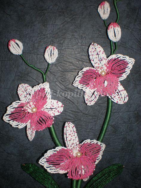Орхидея из бисера мастер класс