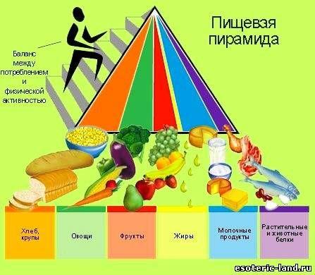 Основные принципы правильного питания